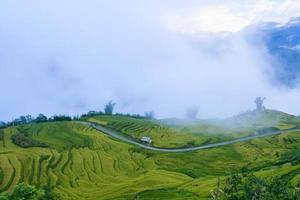 Rice filed of terraces in Y Ty