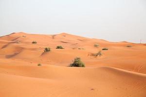deserto de areia vermelha