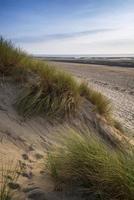Summer evening landscape view over grassy sand dunes on beach photo