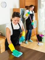 Two cleaners cleaning room together photo
