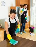 dos limpiadores que limpian el cuarto juntos