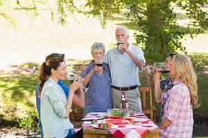 personas mayores felices brindando con su familia