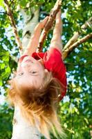 niño colgando de una rama de árbol
