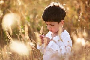 niño en un campo de trigo foto
