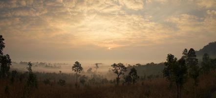 amanecer de niebla de alta montaña en Tailandia.