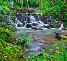 sam lan waterfall in  rainforest asai thailand