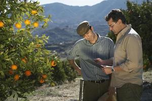 agricultor y supervisor analizando lista de verificación en granja