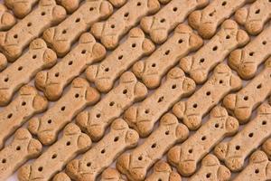 galletas para perro