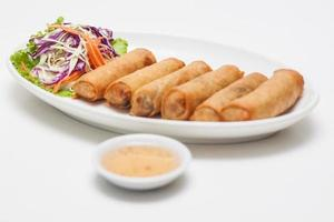 Spring roll for snake photo