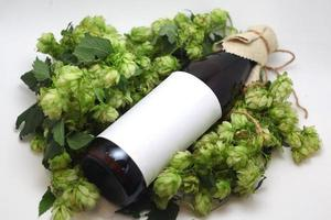 Beer bottle with hops photo