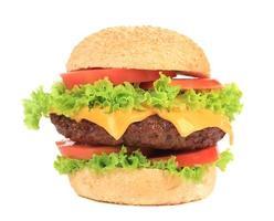 Big appetizing hamburger. photo