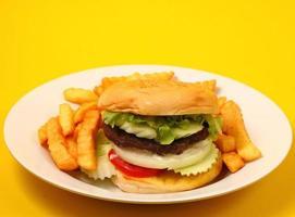 hamburger and french fries photo