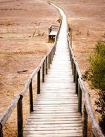 camino de madera en un campo foto