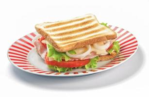 Grilled sandwich on white background