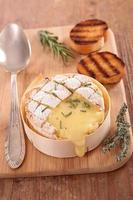 Camembert al horno foto