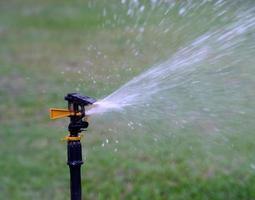 Sprinkler watering photo
