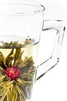 chá de jasmim chinês