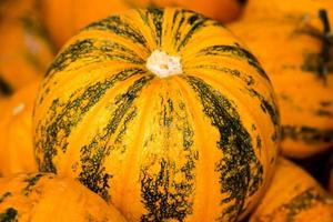 Orange and green striped pumpkin