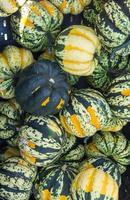 Carnival winter squash at the market