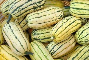 Organic Delicata squash piled and for sale