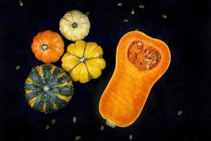 Winter squash abstract composition