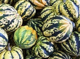 Colorful Carnival squashes