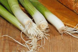 Spring onions, onions, vegetables