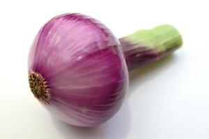 red onion photo