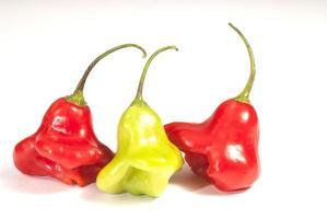 Chiles rojos Picantes foto