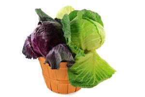 Heads red, green, and white flat cabbage in bushel photo