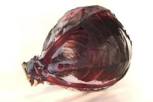 Red cabbage photo