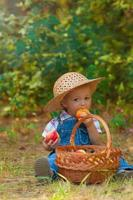 Little boy with a basket of apples in the autumn