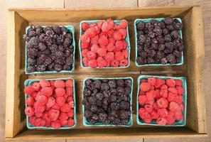 Wooden box with baskets of berries photo