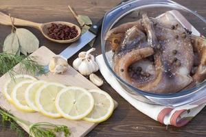 Squid carcass