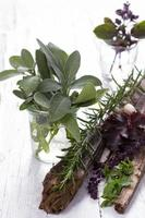 salie, rozemarijn, munt en andere kruiden