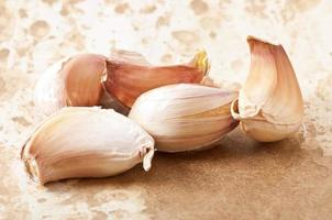 garlic on the old paper background