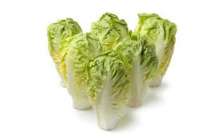 Baby gem lettuce