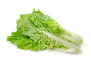lettuce leaves isolated on white background photo