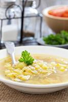 Soup with salted cucumbers and pearl barley photo