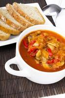 letcho with paprika, zucchini and champignon mushroom photo