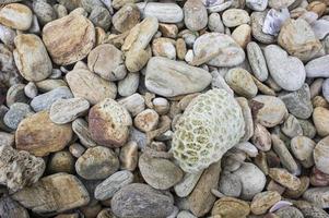 fondo de piedra de roca foto