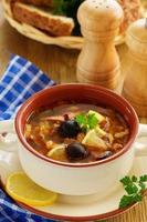 Meat solyanka- Russian cuisine.