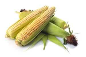 fresh corn fruits with green leaves isolated