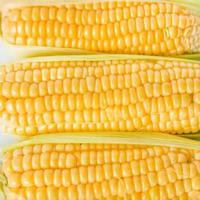 maíz fresco