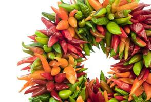 Pepper wreath isolated in white photo