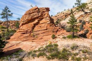 Parque Nacional Zion, Estados Unidos. foto