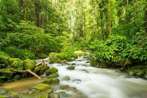 hermoso río