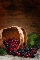 Fresh cranberry and chokeberry