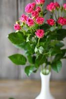 rosas rosadas en un florero foto