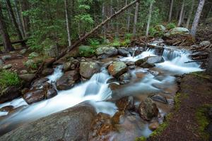 río profundo del bosque de colorado